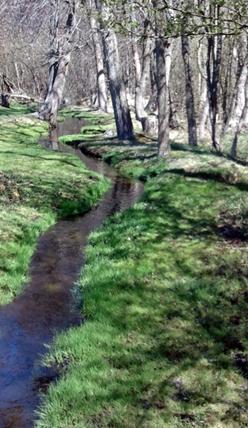 Newton Stormwater Infrastructure Improvement Plan