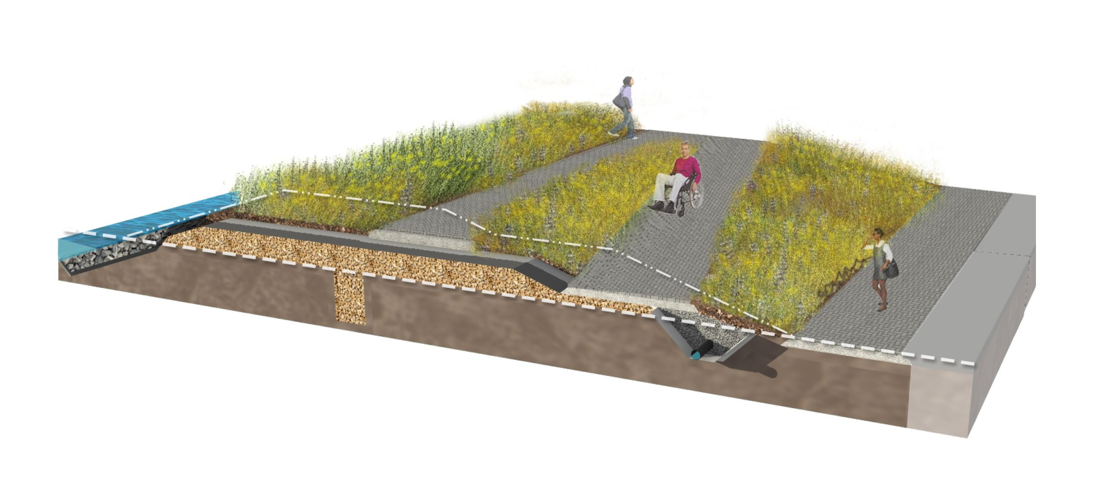Vegetated Berm