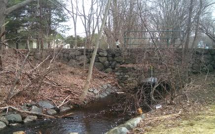 Mill Brook creek