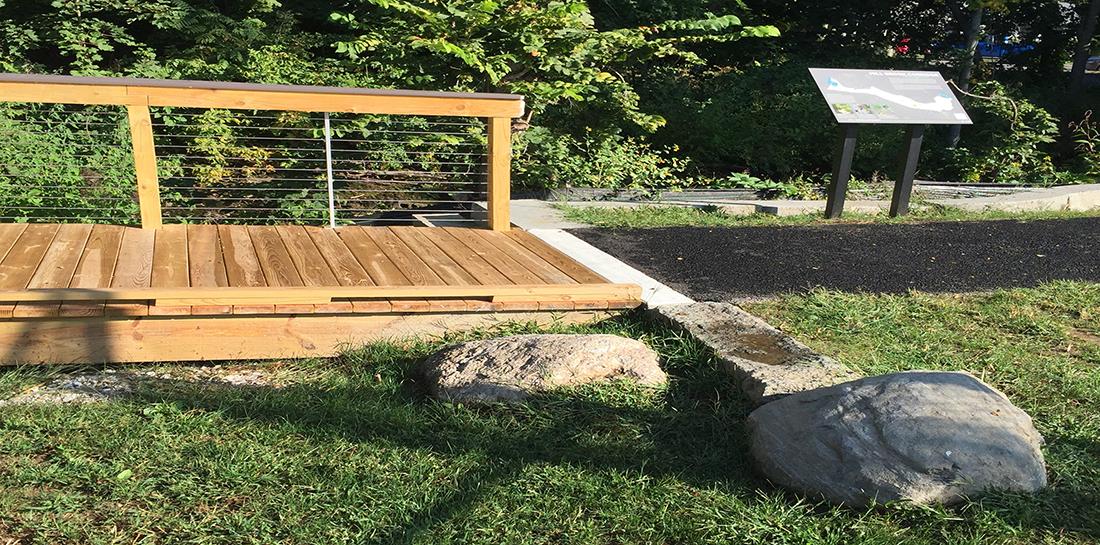 Wellington Park: Path meets boardwalk
