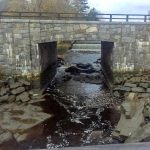 Mill Pond Dam Study